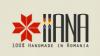 iiana.ro - Logo